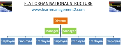 Flat Organisational Structure Diagram