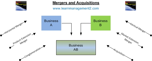 the reason behind a companys merger and acquisitions Schipper and thompson8 argue that for acquiring companies, an acquisition is  only one action in a continuous strategic plan of acquisitions for that reason, the .