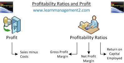 profitability ratio Definition of profitability ratios: measures that indicate how well a firm is performing in terms of its ability to generate profit.